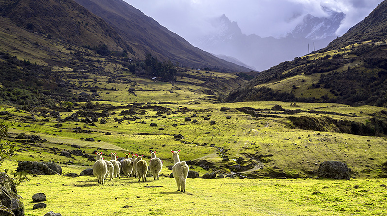 The Lares Route to Machu Picchu